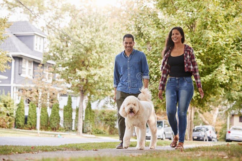 Par som går hunden längs den förorts- gatan arkivfoton