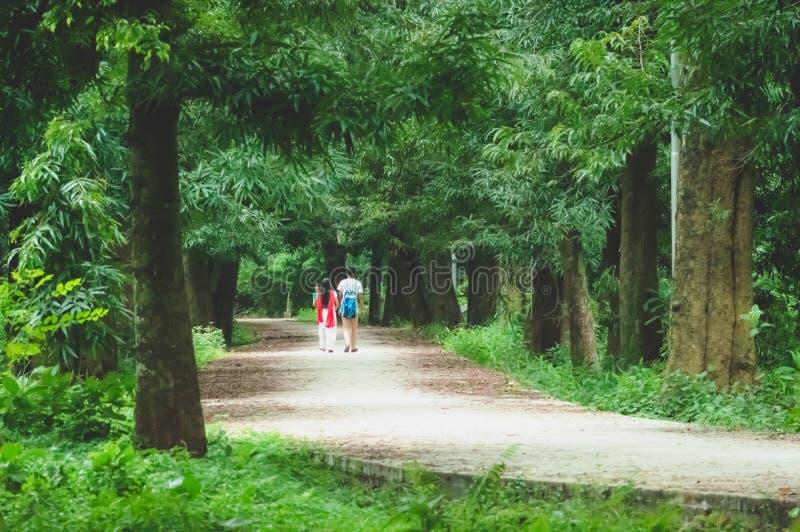 Par som går i en parkera royaltyfria bilder