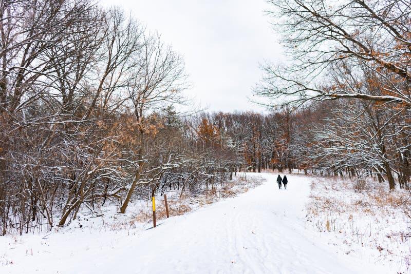 Par som går på en dold slinga för snö i en mellanvästern- skog fotografering för bildbyråer