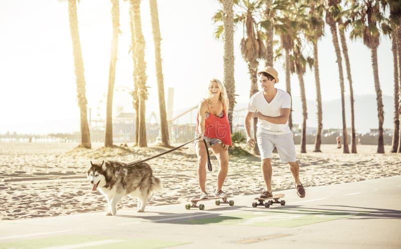 Par som har gyckel med deras hund fotografering för bildbyråer