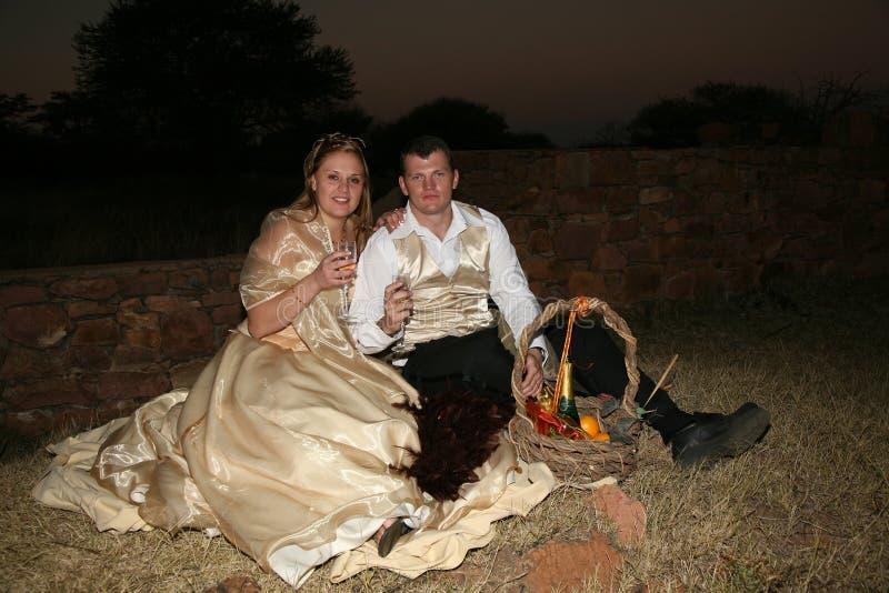 par som har picknickbröllop fotografering för bildbyråer