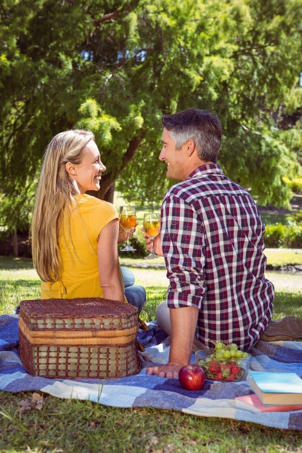 Par som har picknicken i parkera royaltyfria foton
