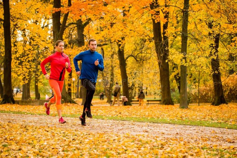 Par som joggar i höstnatur royaltyfri fotografi