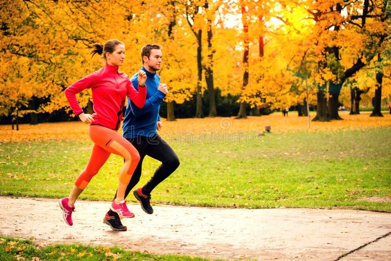 Par som joggar i höstnatur royaltyfria foton
