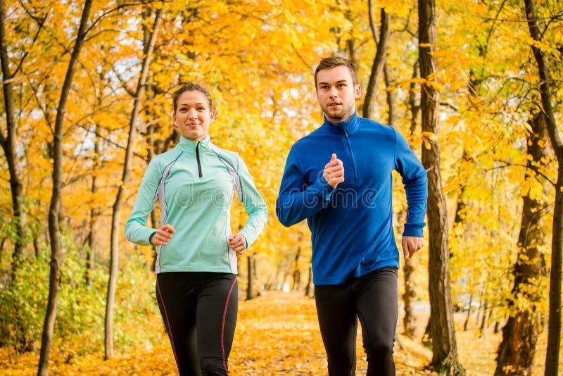 Par som joggar i höstnatur arkivfoton