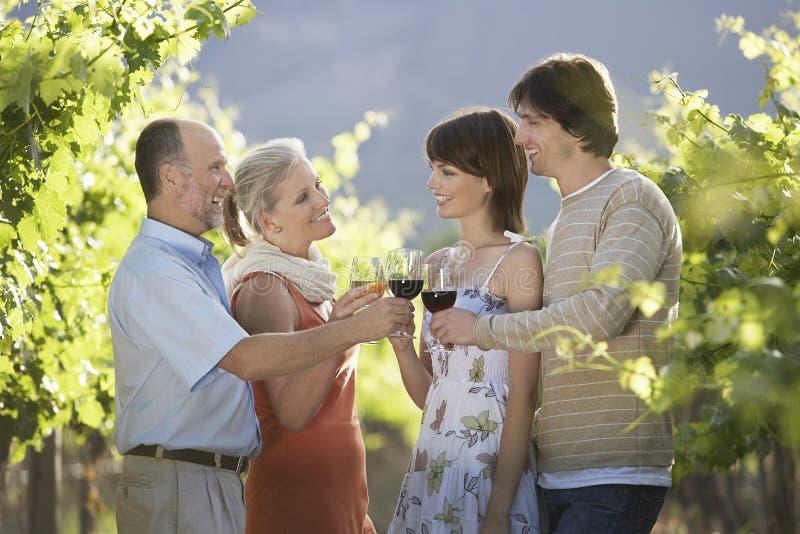 Par som rostar vinexponeringsglas i vingård royaltyfri foto