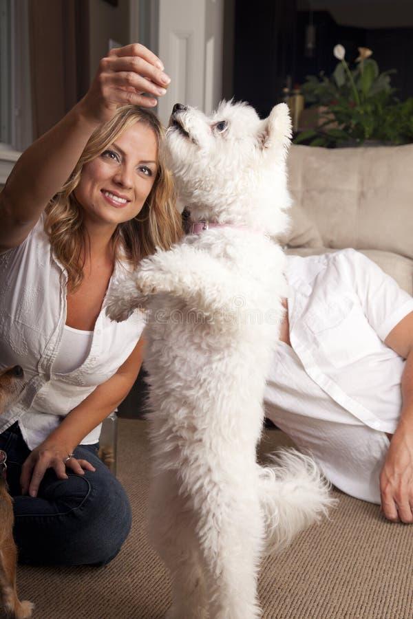 Par som spelar med den älsklings- hunden royaltyfri bild