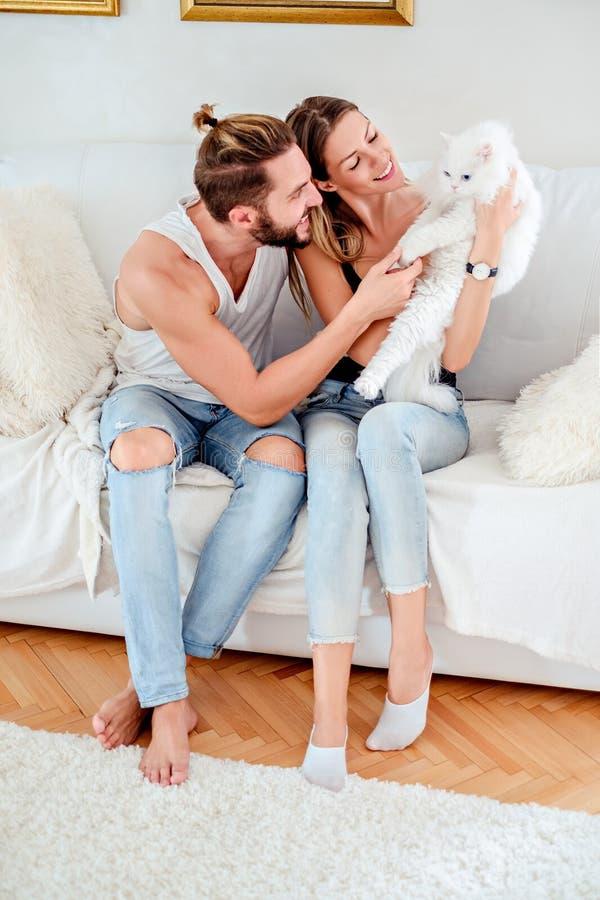 Par som spelar med deras vita persiska katt arkivbild
