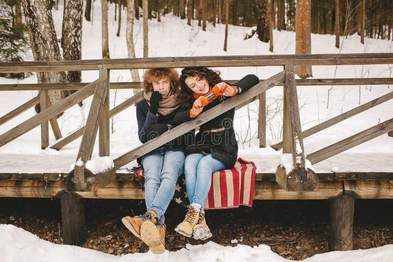 Par som spelar munspelet i vinter, parkerar tillsammans sammanträde på floo royaltyfri bild