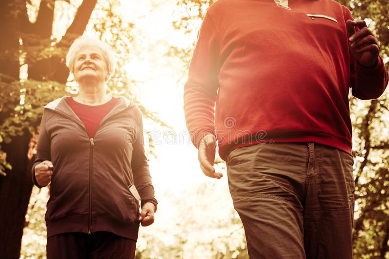 Par som tillsammans joggar hoskogen royaltyfri fotografi