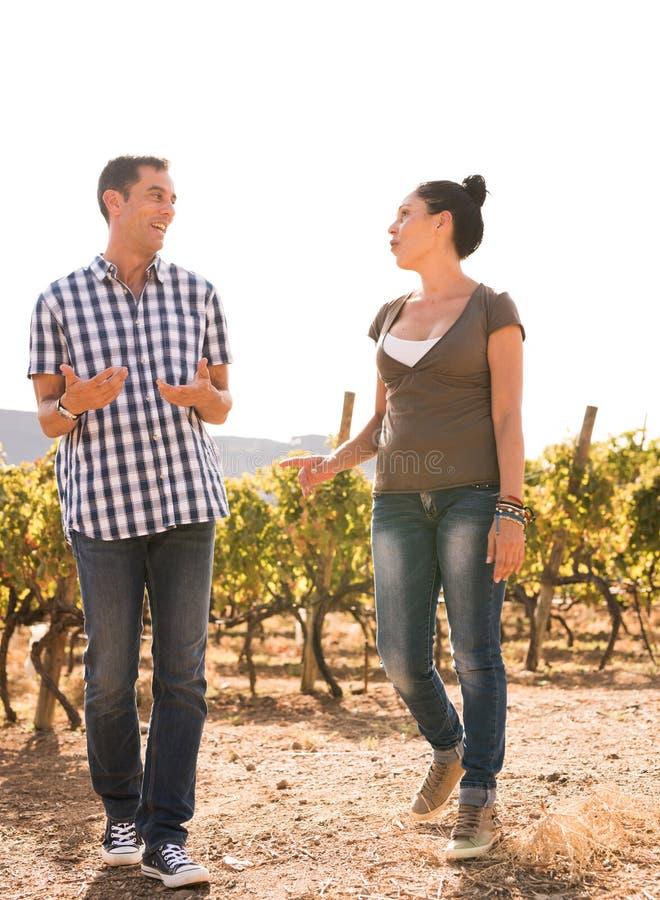 Par som tillsammans spenderar tid i vingården royaltyfri fotografi