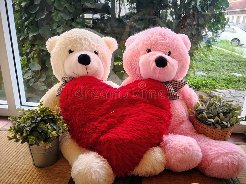 Par Teddy Bears i omfamning royaltyfri fotografi