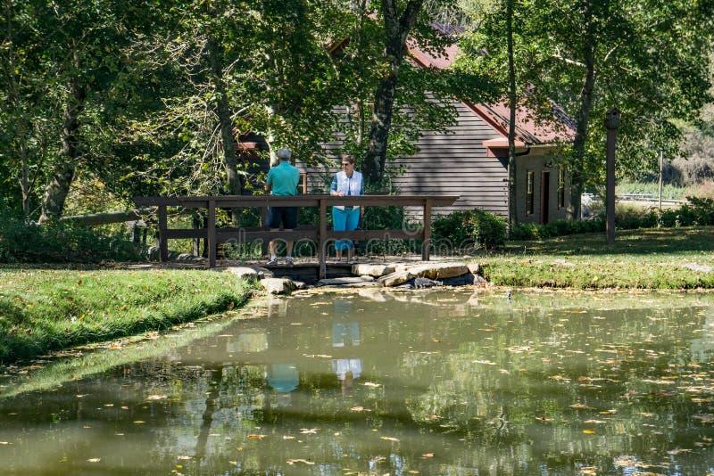 Par vid ett fiskdamm royaltyfria foton