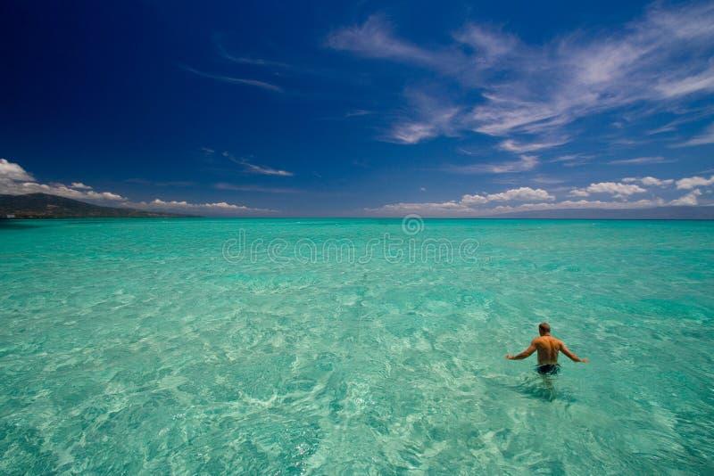 Paraíso da opinião de oceano foto de stock