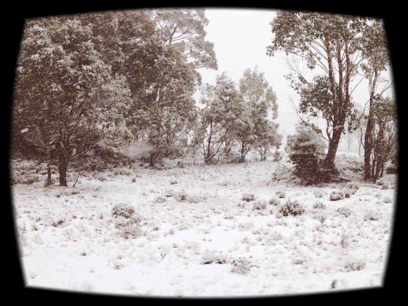 Paraíso del invierno fotos de archivo libres de regalías