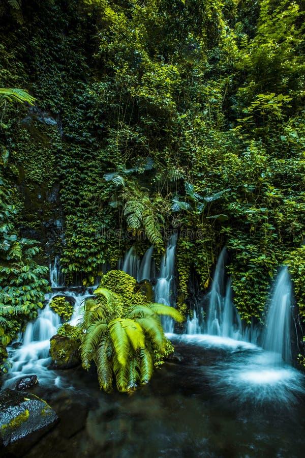 Paraíso escondido em Indonésia East Java imagens de stock