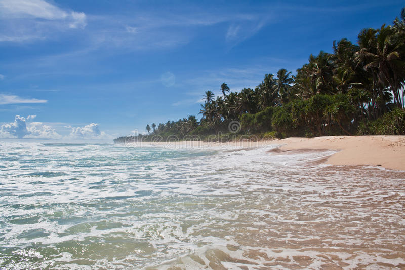 Paraíso - playa tropical, Sri Lanka fotos de archivo