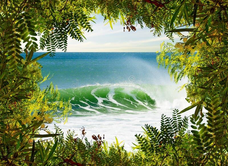 Paraíso que practica surf foto de archivo