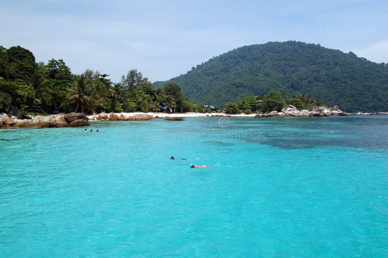 Paraíso Snorkeling fotografia de stock royalty free