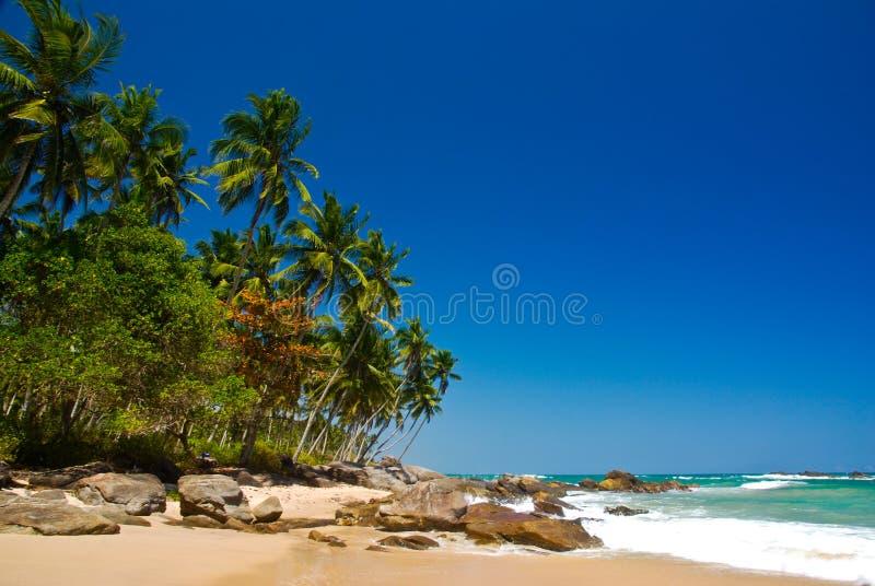 Paraíso tropical fotos de stock royalty free