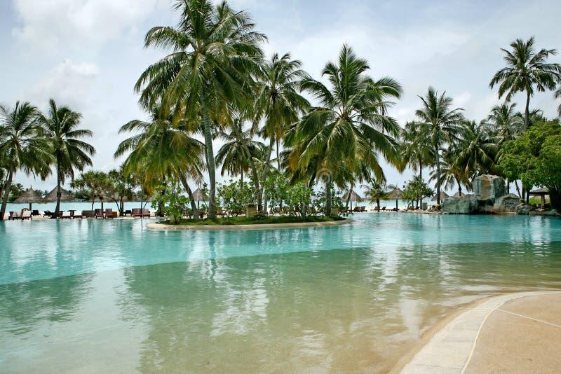 Paraíso tropical imagenes de archivo