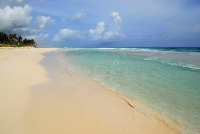 Paraíso tropical fotografia de stock