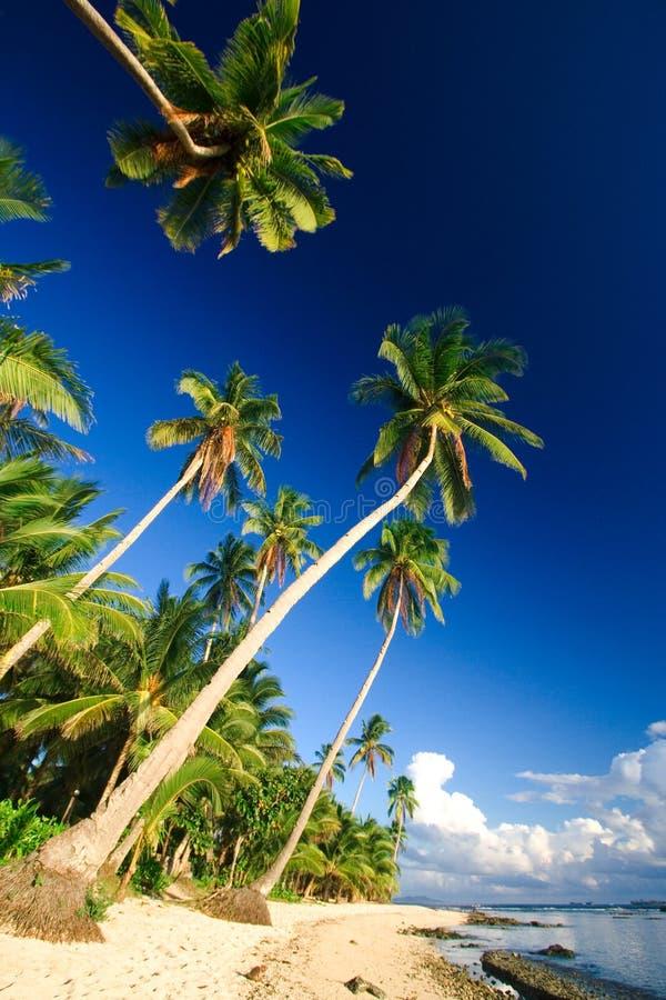 Paraíso tropical da praia fotografia de stock royalty free