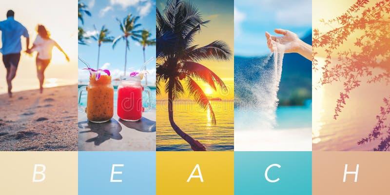 Paraíso tropical do conceito, molde da colagem para algum projeto fotografia de stock