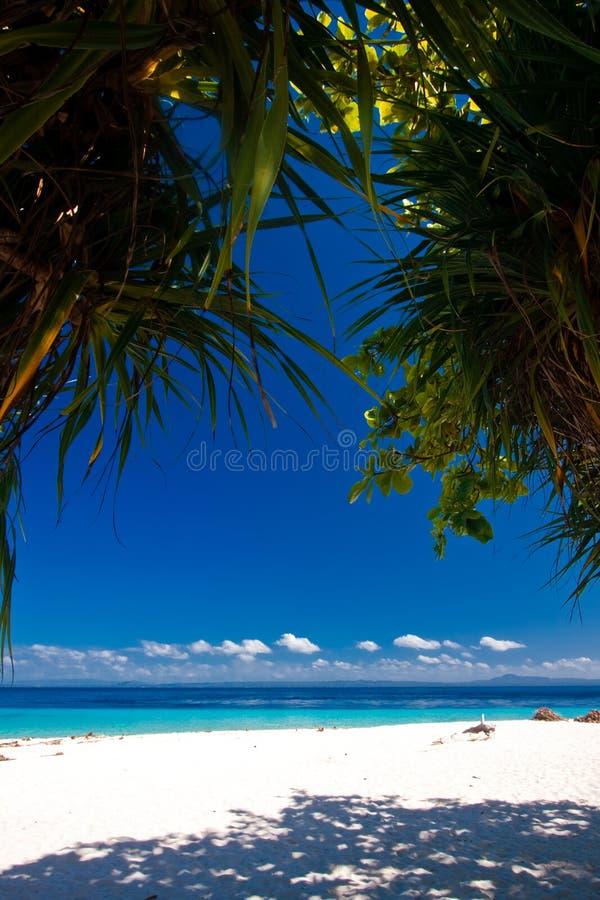 Paraíso tropical do console foto de stock royalty free