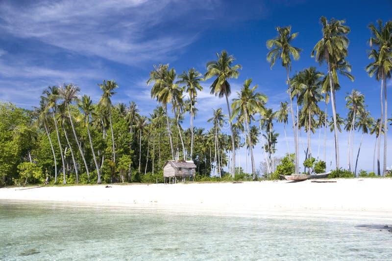 Paraíso tropical do console foto de stock