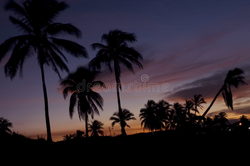 Paraíso tropical no por do sol fotografia de stock royalty free