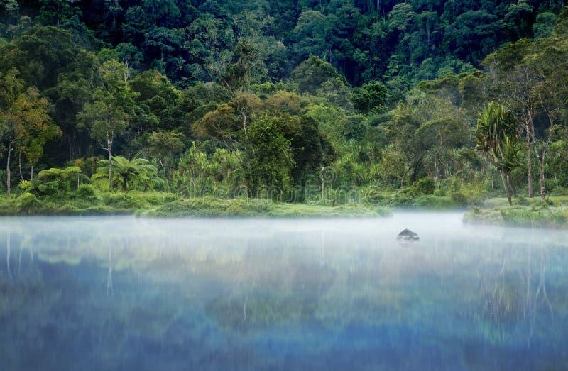 Paraíso tropical ocultado fotografía de archivo libre de regalías