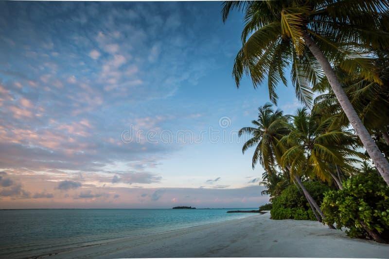 Paraíso tropical - puesta del sol en Maldivas imagen de archivo libre de regalías