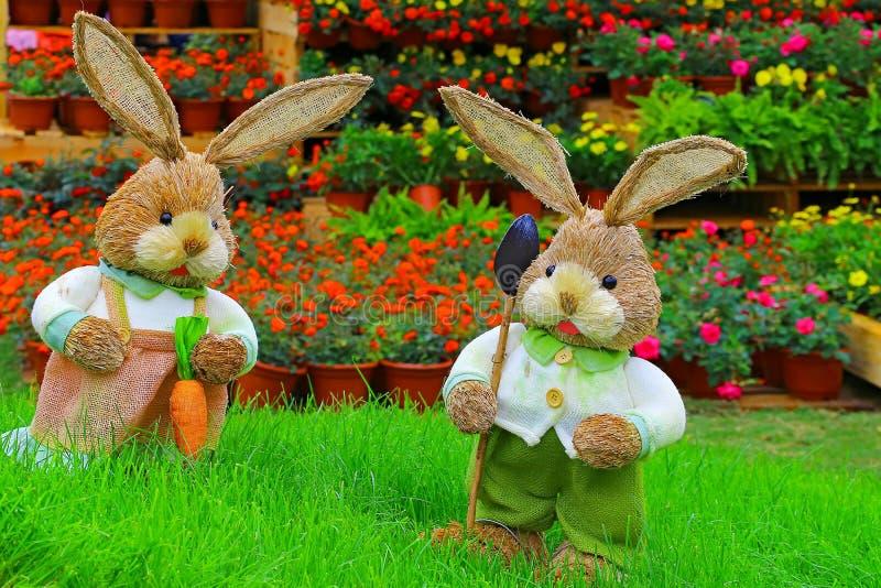 Para śliczni mali Easter króliki obrazy royalty free