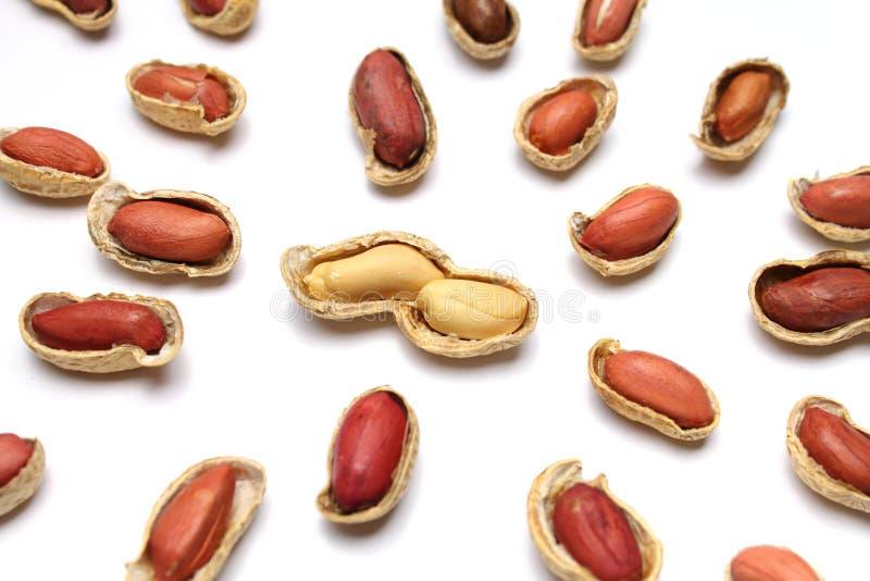 Download Para arachidy obraz stock. Obraz złożonej z arachidy - 13328243