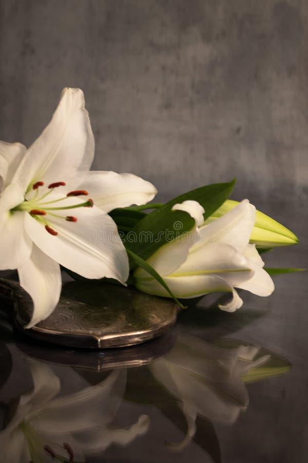 Para av liljor och handspegeln royaltyfri bild