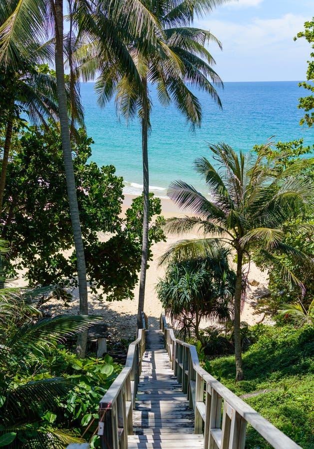 Para baixo escadas de madeira da maneira à praia, com palmas ao redor Praia de Naithon, Phuket, Tailândia fotografia de stock royalty free