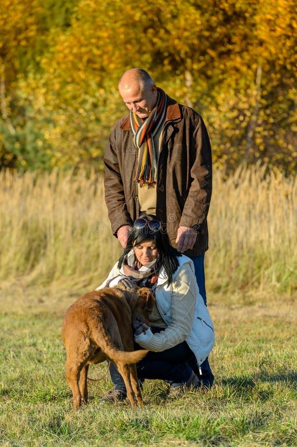 Para bawić się z psim pogodnym jesień parkiem zdjęcia stock