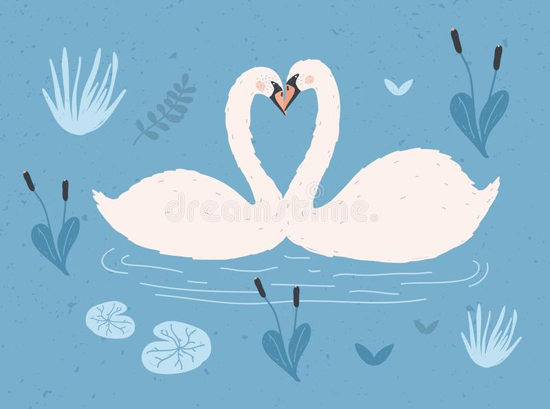 Para biali łabędź unosi się wpólnie w wodzie staw lub jezioro wśród rośliien Para ślicznej kreskówki dzicy ptaki w miłości ilustracja wektor