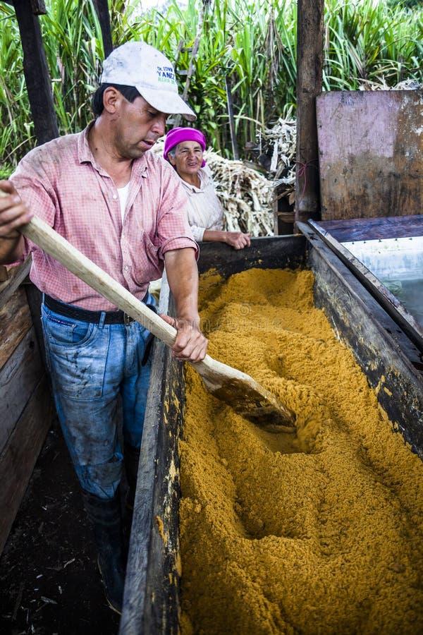 Para brown cukieru rolnicy obraz stock