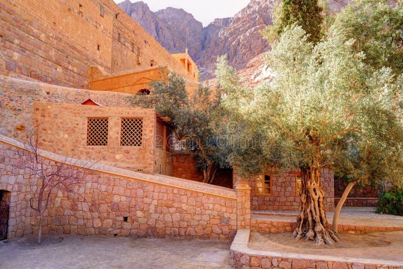 Para dentro do monastério de Catherine de Saint em moumtains de Sinai, Egito imagem de stock