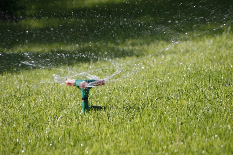 Para irrigar um gramado. imagem de stock