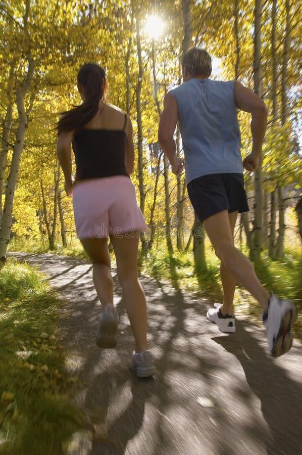 Para Jogging Przez lasu zdjęcia royalty free