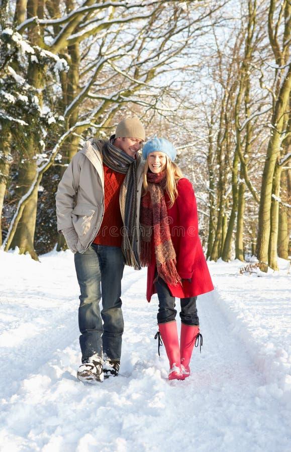 para las śnieżny chodzący obrazy royalty free