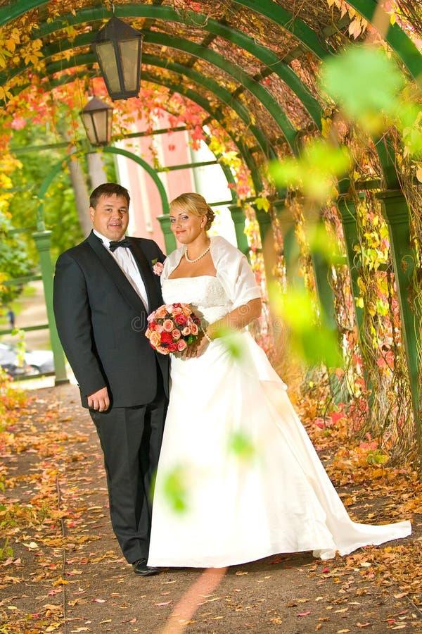 Download Para ślub obraz stock. Obraz złożonej z czysty, wpólnie - 13071671