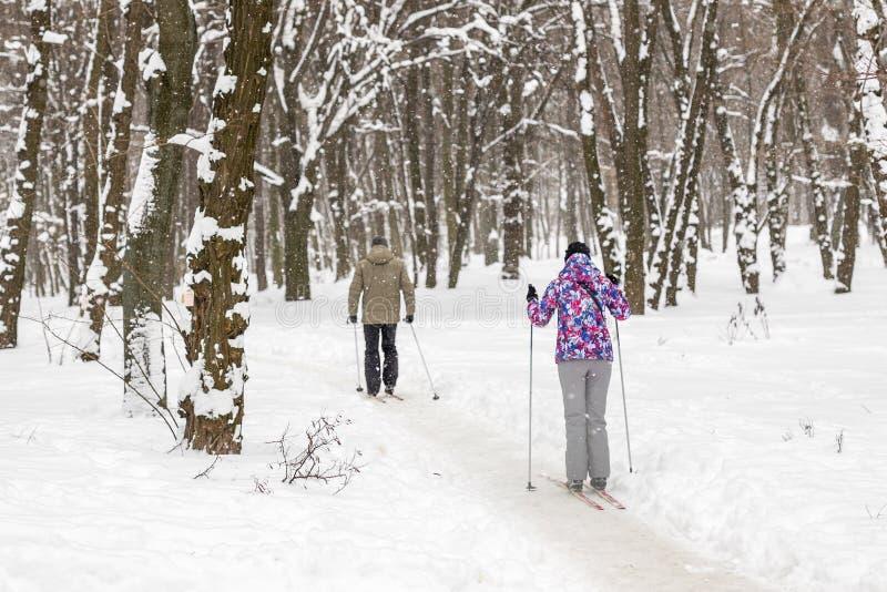 Para ludzie cieszy się przez cały kraj narciarstwo w miasto lesie w zimie lub parku Rodzinnego sporta plenerowe aktywność w zima  fotografia royalty free