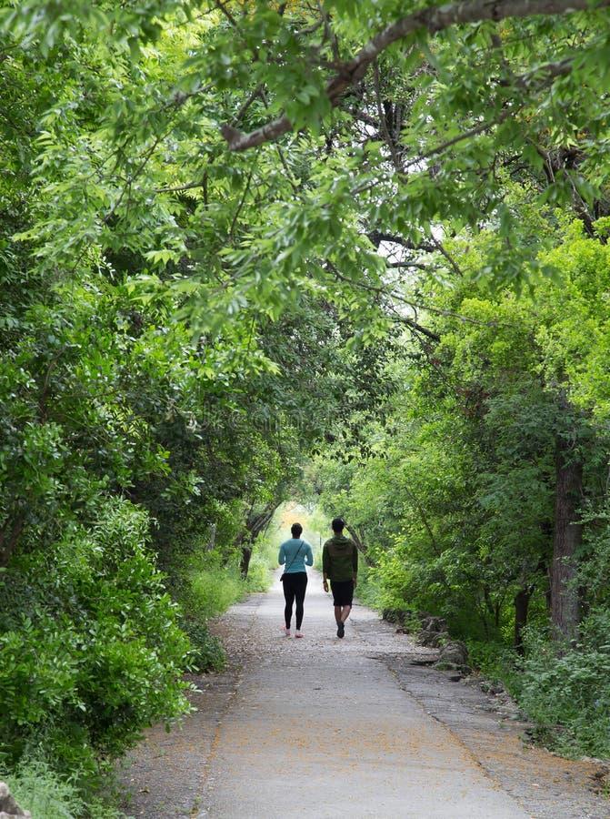 Para na chodzącej ścieżce w parku fotografia stock