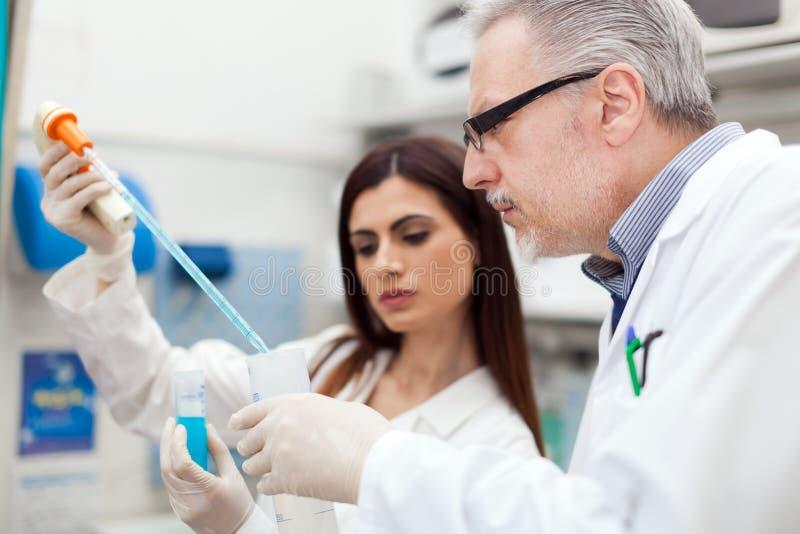 Para naukowowie w laboratorium obraz stock