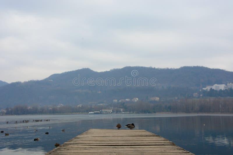 Para o lago congelado fotografia de stock royalty free