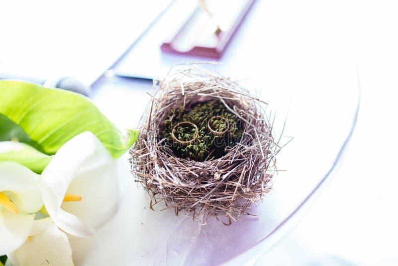 Para obrączki ślubne kłaść w gniazdowej Ślubnej dekoraci Symbol rodzina, więź i miłość, obraz royalty free
